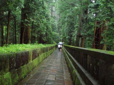 Weg zum Tokugawa Grab